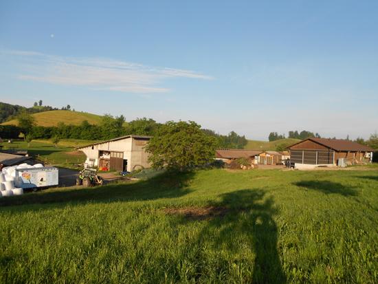 Bild Hof Klimapositive Landwirtschaft